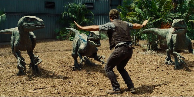 The raptors certainly play a large role in the Jurassic World story.