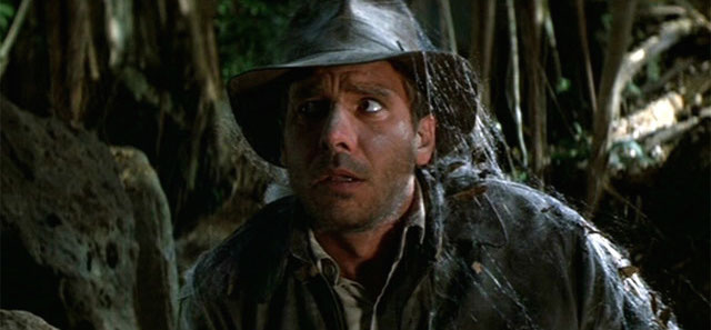 Raiders of the Lost Ark is another of the most beloved Harrison Ford movies.