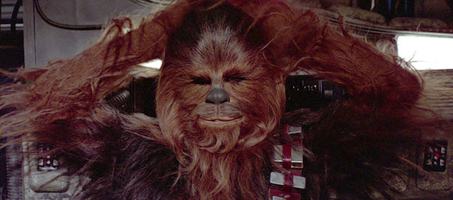 Chewbacca joins the cast of the Han Solo movie!