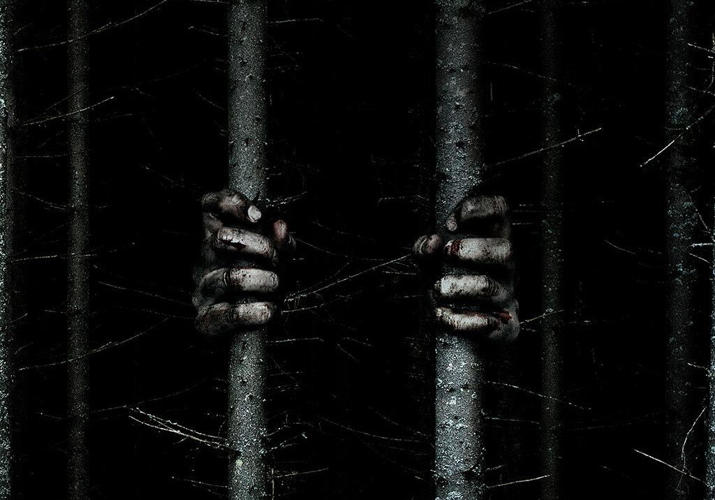 woods trailer debuts from adam wingard and lionsgate