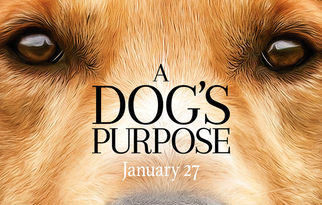 Josh Gad is Reincarnated Over and Over in A Dog's Purpose Trailer