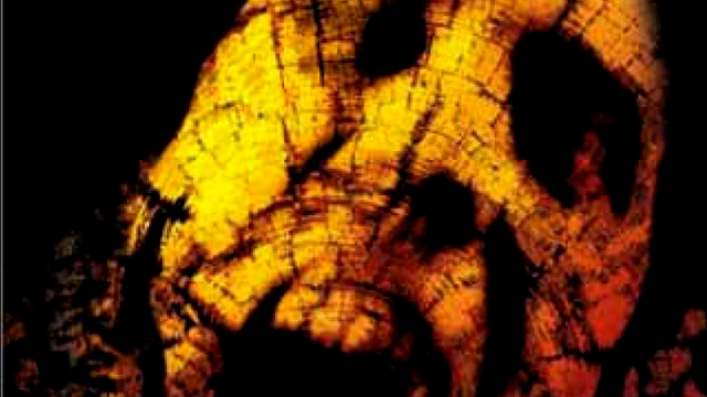 Book of Shadows: Blair Witch 2 hit the big screen in 2000.