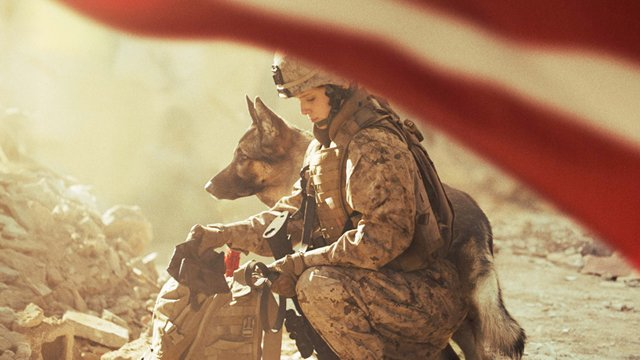 Sit down with the Megan Leavey cast. Watch our Megan Leavey cast interviews right here.