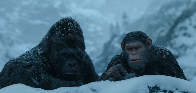 Luca and Caesar in War for the Planet of the Apes