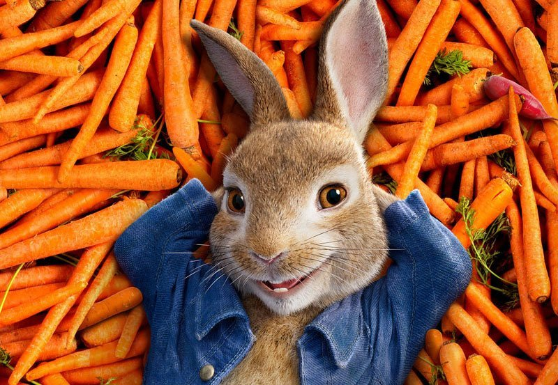 New Peter Rabbit Trailer and Poster Arrive