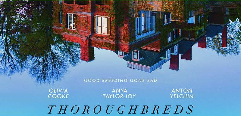 Thoroughbreds Clip, Poster Paint Piercing, Trippy Picture