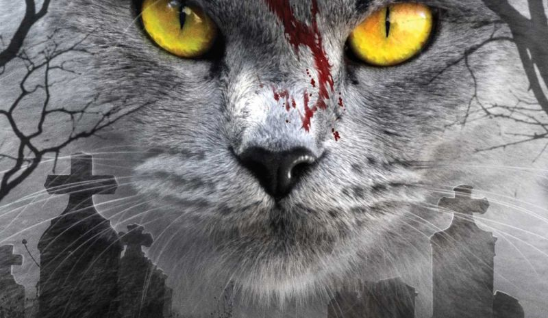 Production Begins on Pet Sematary Remake