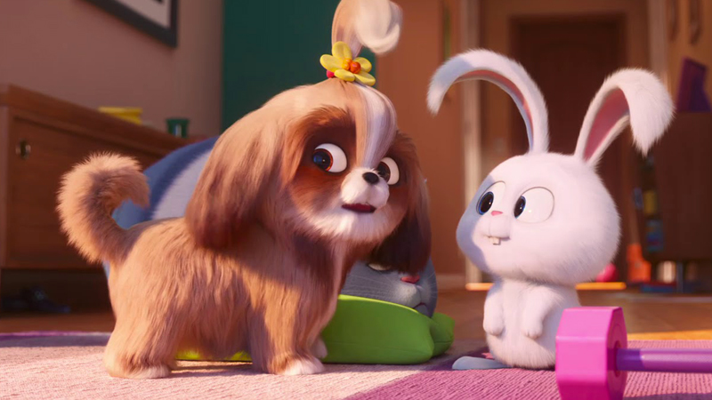 Secret Life of Pets 2 trailer introduces Daisy