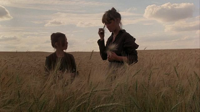 Every Terrence Malick Movie Ranked