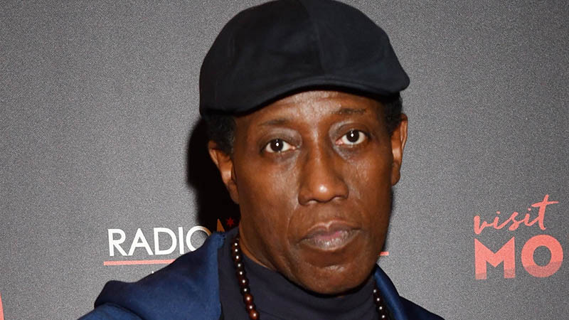 Wesley Snipes To Star in Zombie Thriller Outbreak Z