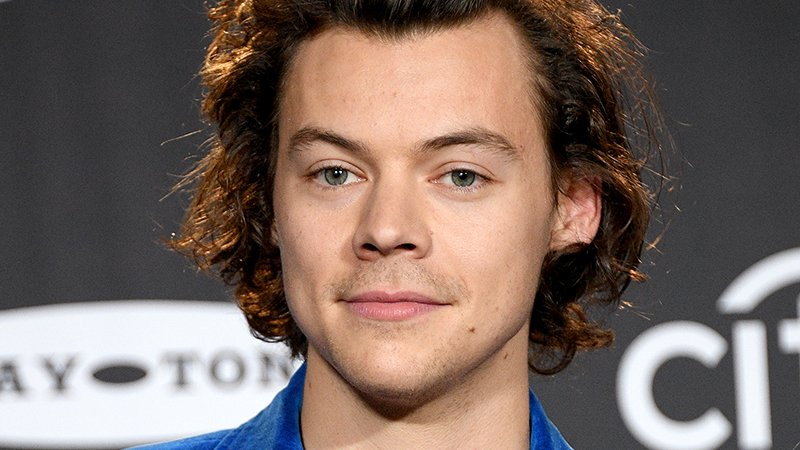 Harry Styles Passes on Prince Eric Role in Disney's The Little Mermaid