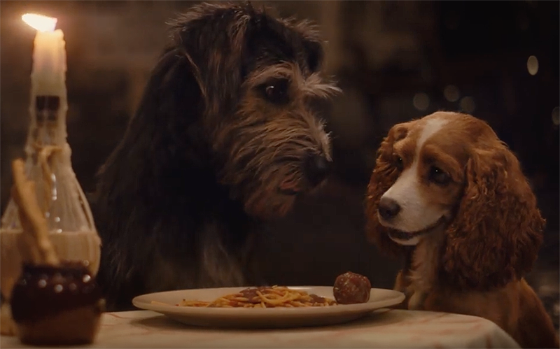 New The Lady and the Tramp Trailer for the Disney+ Movie