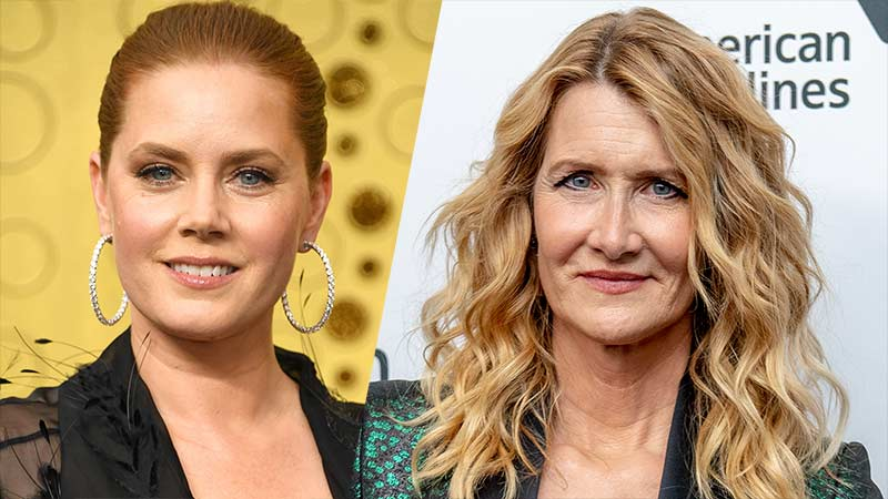 The Most Fun We Ever Had: Amy Adams & Laura Dern Producing HBO Series
