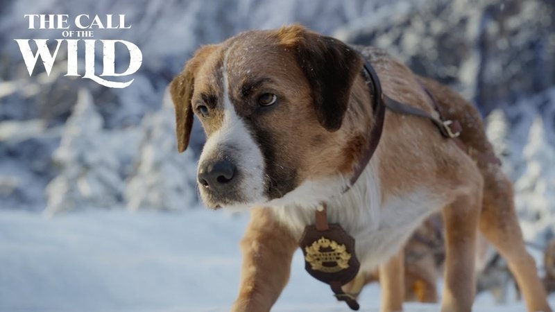 New The Call of the Wild Clip: Buck Leads the Pack