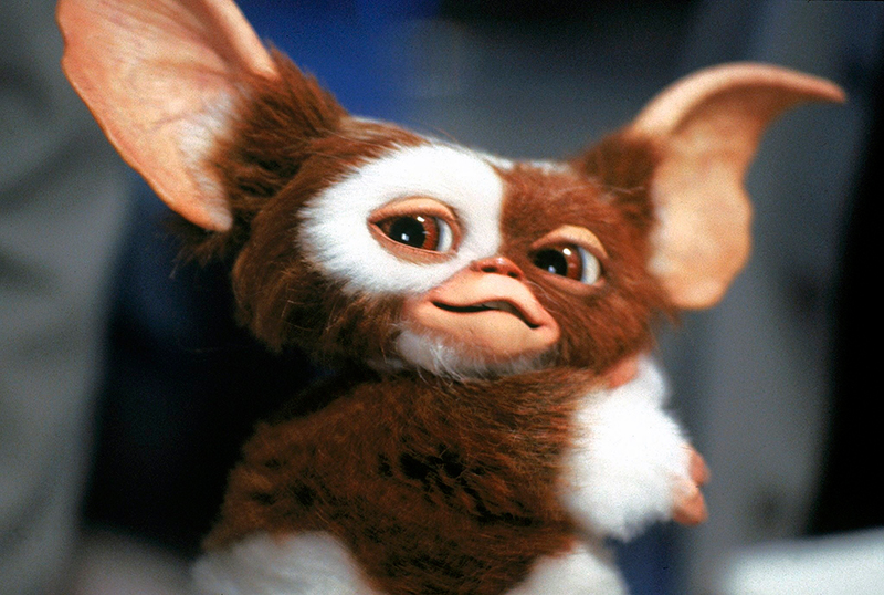 Joe Dante to Consult on HBO Max's Gremlins: Secrets of the Mogwai