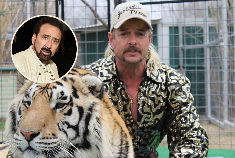 Nicolas Cage To Portray Tiger King's Joe Exotic in Scripted Series
