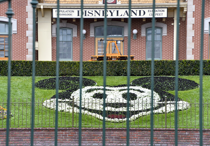 Disneyland Planning for July 17 Reopening Date