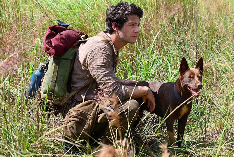 Paramount Sets PVOD Release for Dylan O'Brien-Led Apocalyptic Adventure