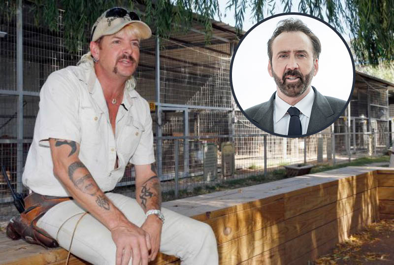 Amazon Acquires Joe Exotic Scripted Series Led by Nicolas Cage