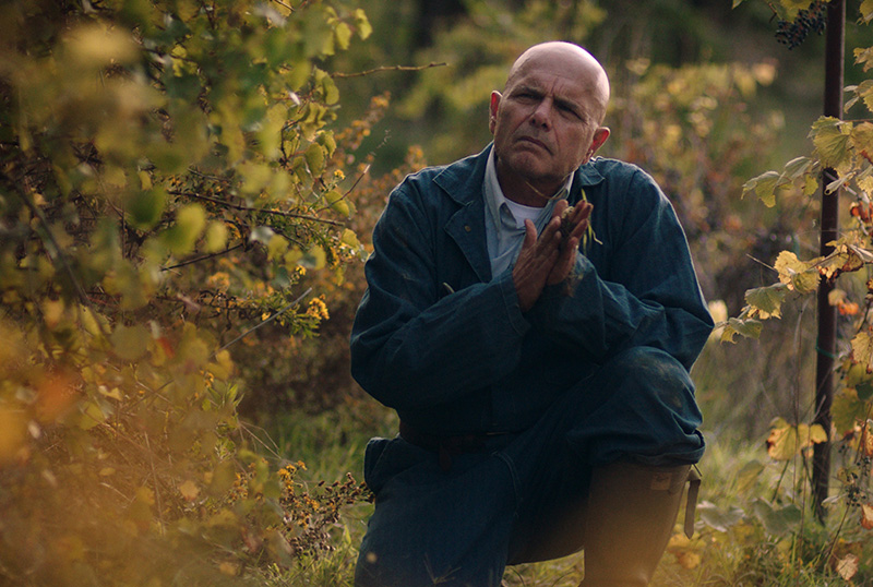 Exclusive From the Vine Clip Featuring Joe Pantoliano in the New Dramedy