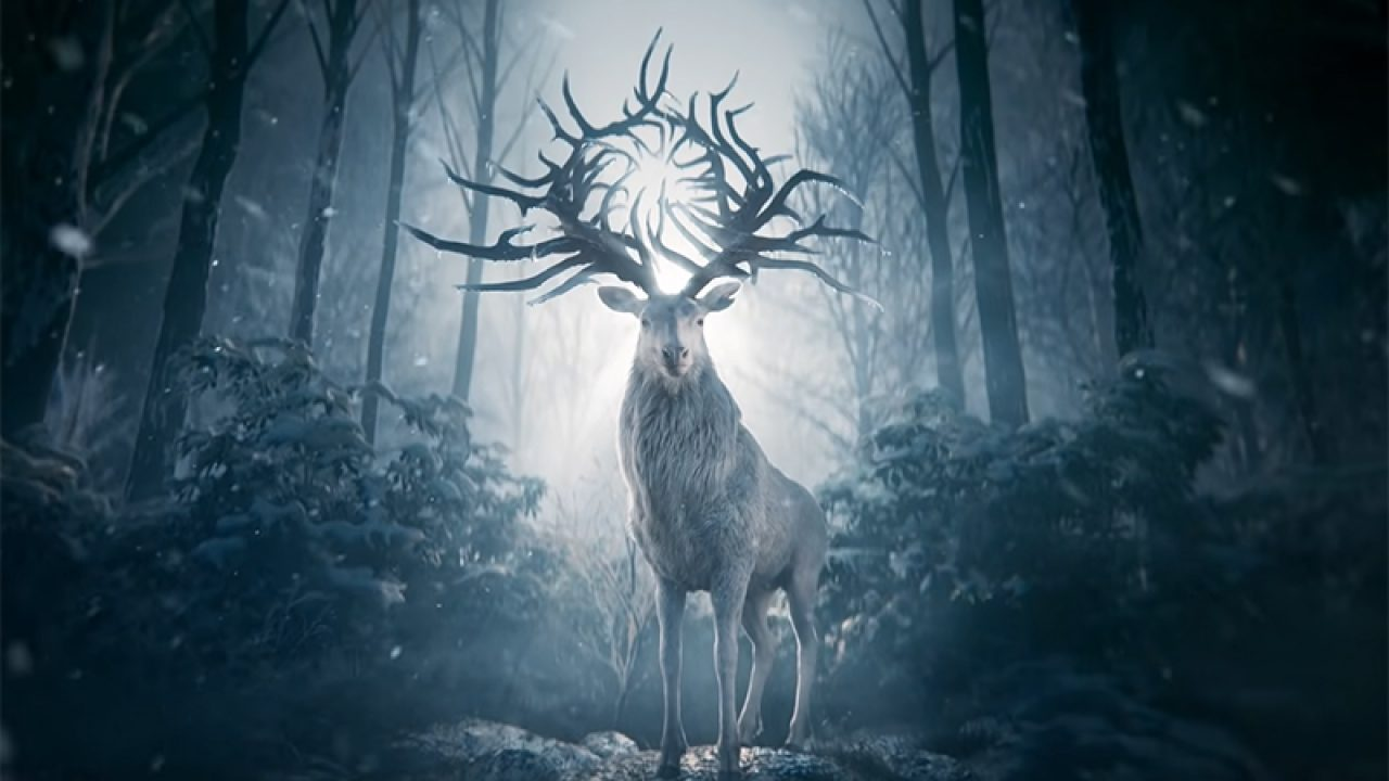 New Shadow and Bone Photos Released for Netflix's Series Adaptation -  ComingSoon.net