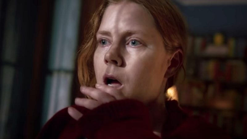 The Woman in the Window Sets Release Date For Netflix Debut