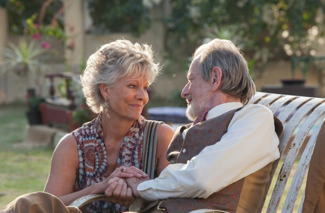 second-best-exotic-marigold-hotel-picture-2
