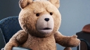 Ted, Ted (2012)