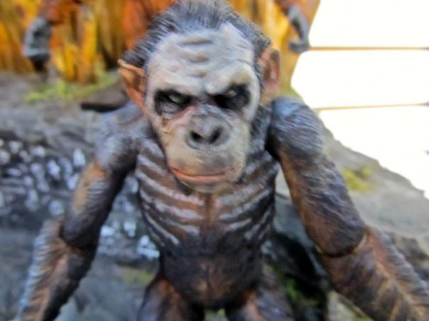 NECA_Dawn_of_the_Planet_of_the_Apes_5.jpg